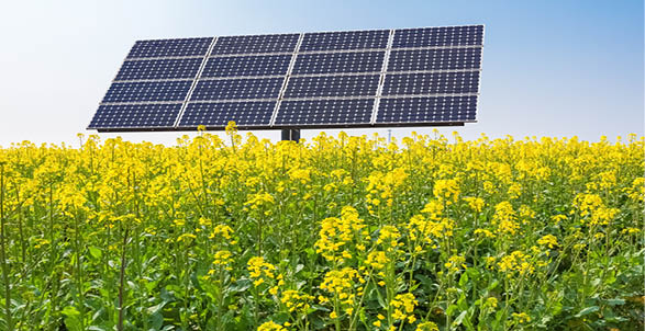 Soltysinski Kawecki & Szlezak Advises IB Vogt on Investment in Portfolio of Polish PV Companies