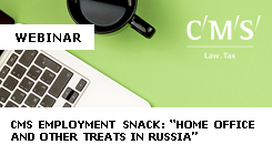 Webinar: CMS Employment Snack - Article