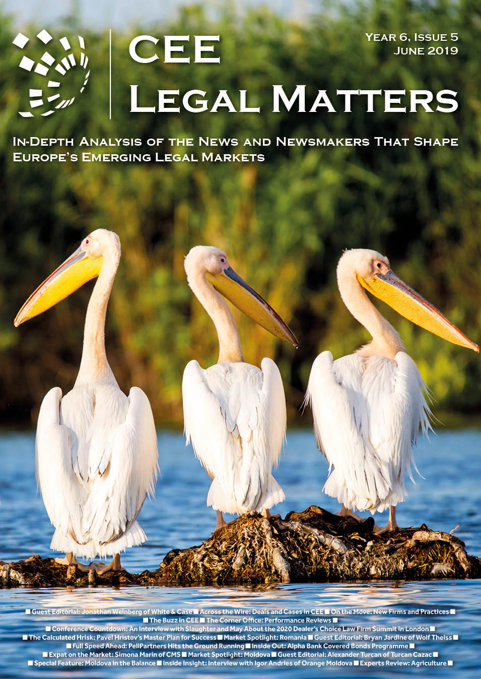 CEE Legal Matters: Issue 6.5.