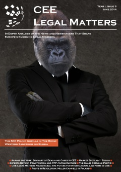 CEE Legal Matters: Issue 1.3.